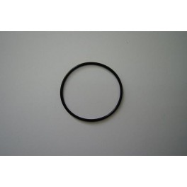 O-Ring Wasserpumpe